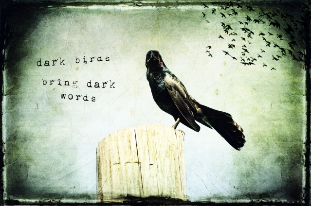 Dark Birds Bring Dark Words