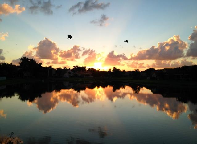 Sunrise 10.30.2013