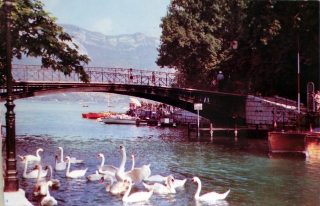 Swans on Le Pont des Amours