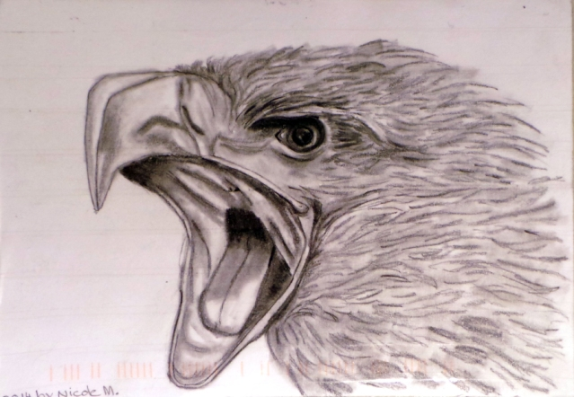 Eagle by Nichole M. of Germany